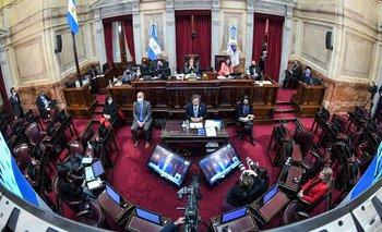 Un senador de JxC insultó a quien presidía la sesión  | Senado