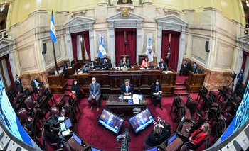 Las claves del debate por el aborto legal: la mirada puesta en los indecisos  | Camara de senadores