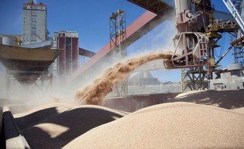 Sube la soja y el maíz se disparó al máximo valor en siete años | Agro