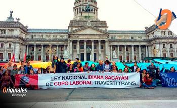 Cupo laboral travesti trans: el camino de una ley reparadora  | Activismo trans
