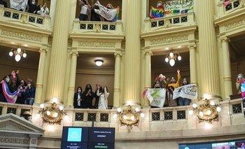 Cristina Kirchner celebró la sanción del cupo laboral trans | Senado