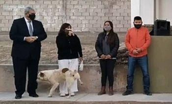 Un perro le hizo pis a una intendenta mientras daba su discurso | Virales
