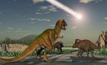 Los dinosaurios ya se estaban extinguiendo cuando cayó el meteorito   Fenómenos naturales
