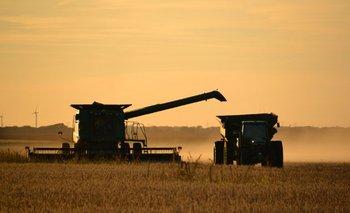 Campo: se perdieron U$S4.200 millones por la sequía | Bolsa de cereales