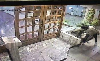 Video: un hombre se robó una planta de la entrada de un edificio | Videos insólitos