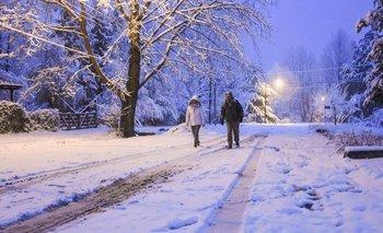 Mendoza atraviesa la mayor nevada en 10 años | Fenómenos naturales