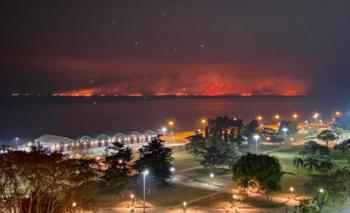 Volvieron los incendios a las Islas del Paraná | Impactantes imágenes
