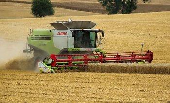 ¿Cómo está hoy el sector de maquinaria agroindustrial en el país? | Análisis