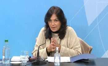 Ibarra defendió la postura del Estado frente a los laboratorios | Coronavirus en argentina