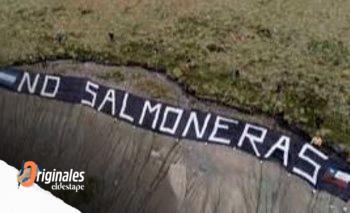 El debate por los salmones, una oportunidad política para el Frente de Todos   Panorama político