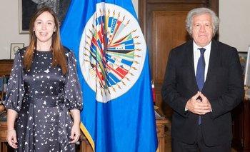 Golpe en Bolivia: los nexos de la OEA de Almagro con el macrismo   Organización de los estados americanos (oea)
