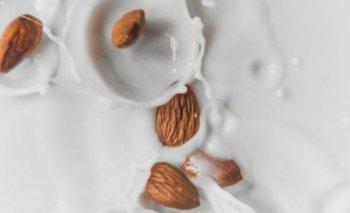 Leches vegetales: beneficios y cómo prepararlas en tu casa   Nutrición