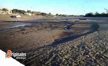 La bajante del Paraná va en camino de ser la peor en 140 años | Histórico suceso