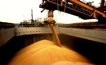Ley agroindustrial: aspiran a generar 700 mil puestos de trabajo   Reactivación económica