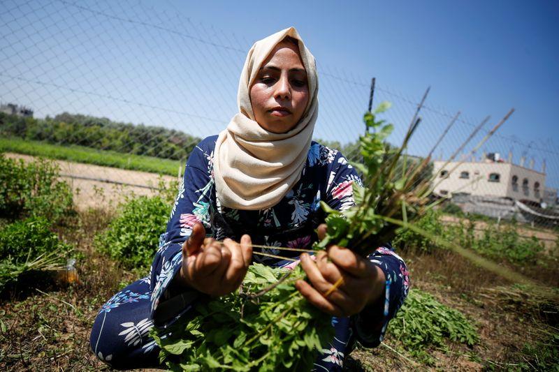 Cuatro palestinos muertos tras operación israelí en Cisjordania | Israel