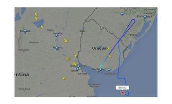 Una bandada de pájaros desvió la trayectoria de un avión a Ezeiza   Vuelo de iberia