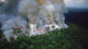 ¿Qué graves consecuencias puede traer para Argentina el incendio en Amazonas? | Incendio en el amazonas