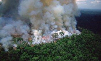 Documentos muestran que Bolsonaro sabía del incendio en Amazonas por anticipado  | Incendio en el amazonas