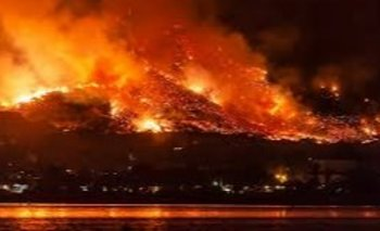 Tres documentales sobre los peligros de los incendios forestales | Cine