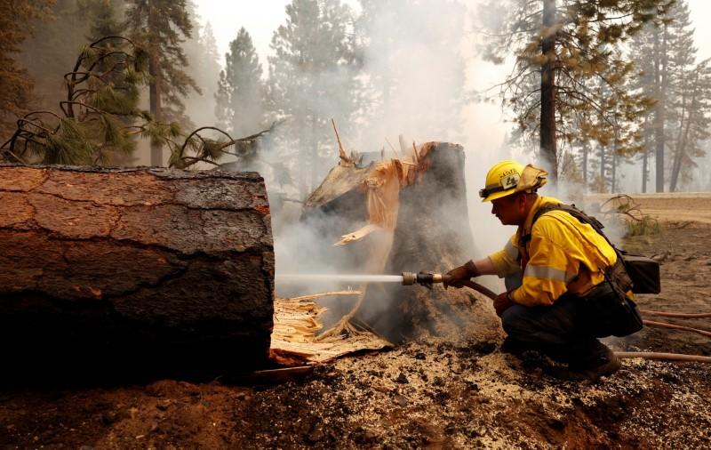 Devastadores incendios forestales azotan a California   Incendio