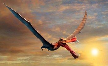 Descubren un dinosaurio idéntico a un dragón: el nuevo fenómeno que asombra al mundo   Fenómenos naturales