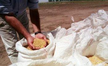 Se acordó un 49,5% de aumento para los trabajadores del sector semillero | Paritarias 2021