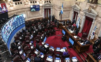 El Congreso retornaría a la presencialidad tras las PASO | Elecciones 2021