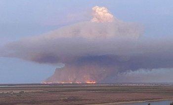 Por nuevos incendios en las islas, se perdieron otras 10 mil hectáreas de humedales | Santa fe