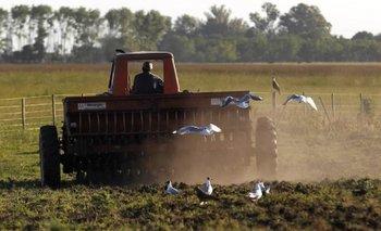 Alerta: el campo retiene la cosecha para licuar la suba de retenciones | Macri presidente