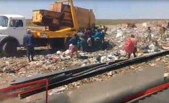Impactante video: así comen de la basura en Corrientes  | Pobreza