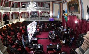 Senadores bonaerenses del FdT apoyaron el proyecto de tarifas de Máximo Kirchner | Provincia