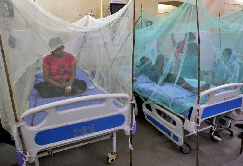 Brote masivo de dengue en India causa decena de muertes | Dengue