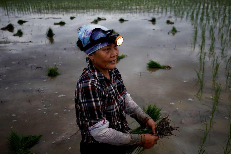 Cambio climático podría desatar migraciones de 216 millones de personas | Cambio climático