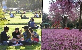 Cuándo empieza la primavera 2021 en Argentina y por qué  | Dia de la primavera