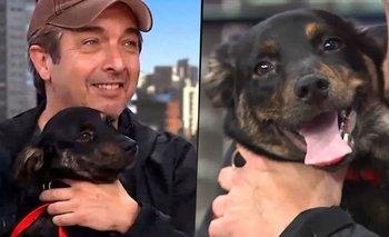 Qué pasó con el perro que Darín llevó a América TV con Leo Montero | Televisión