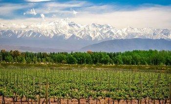 Qué hacer en Mendoza: las mejores vacaciones en la provincia del vino   Turismo