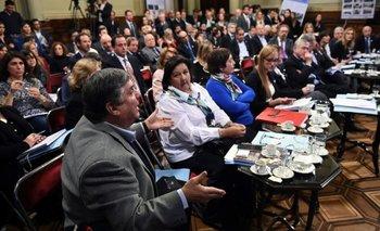 Uno por uno, los senadores que se distancian de Pichetto luego del debate por el presupuesto | Presupuesto 2019