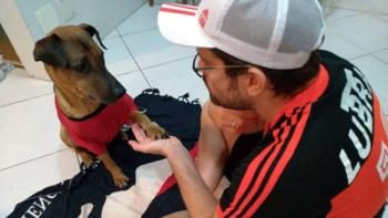 Un hincha vende sus entradas de la Copa Libertadores para tratar a su perro enfermo de cáncer   Copa libertadores