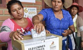 Argentina aprobó protocolo para las elecciones de Bolivia | Elecciones bolivia