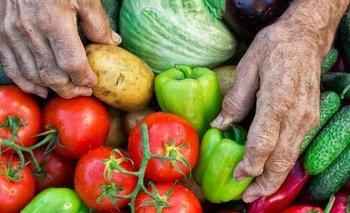 Alimentos: se multiplica la brecha de precios entre el campo y la góndola | Precios