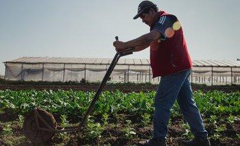 Alimentazo por la ley de acceso a la tierra para pequeños productores | Unión de los trabajadores de la tierra