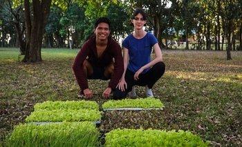 Denuncia de Dolores Etchevehere: ¿Qué es el Proyecto Artigas? | Modelo agroecológico