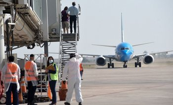 Aerolíneas Argentinas aprobó más de 650 vuelos para noviembre   Transporte