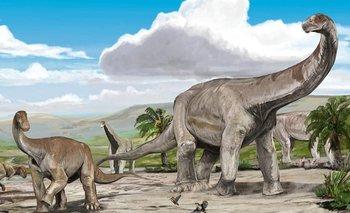 Descubren tesoro paleontológico de casi 70 millones de años en La Rioja | Ciencia