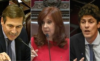 Duro cruce con chicanas entre CFK, Lousteau y Naidenoff en plena sesión | Congreso