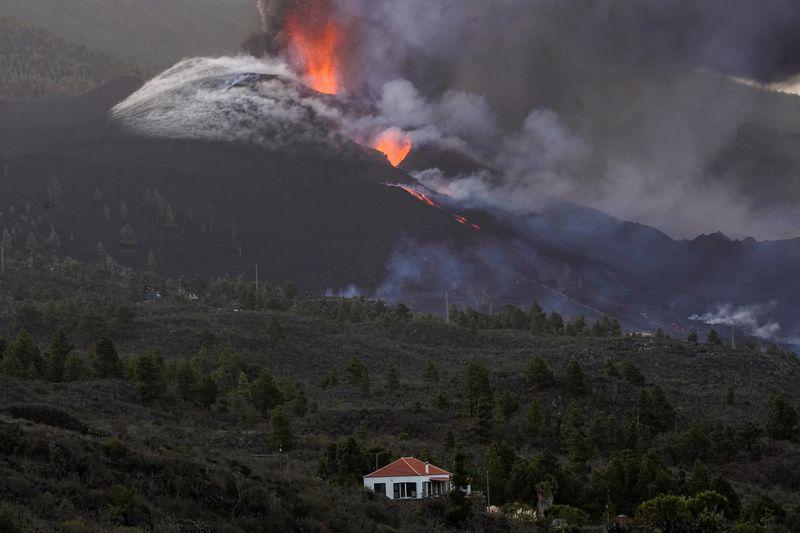 Perros aislados por la lava en La Palma reciben comida mediante drones | España