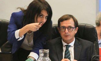 Lipovetzky se diferenció de Macri y habló de golpe en Bolivia   Golpe en bolivia