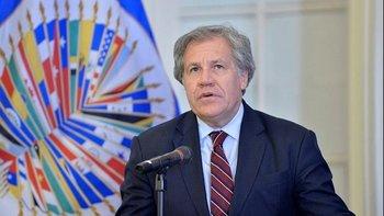 Desnudan la manipulación del informe de la OEA sobre Bolivia | Golpe en bolivia