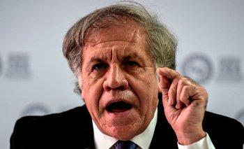 Elecciones en Bolivia: la OEA reconoció su derrota y felicitó al MAS | Elecciones en bolivia