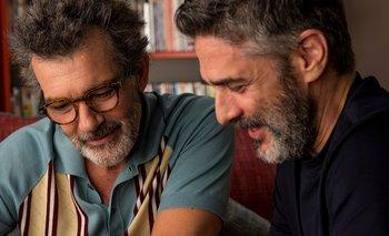 Un nuevo reconocimiento para 'Dolor y Gloria' | Cine